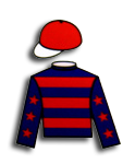 Verified Tipster - Platinum Racing